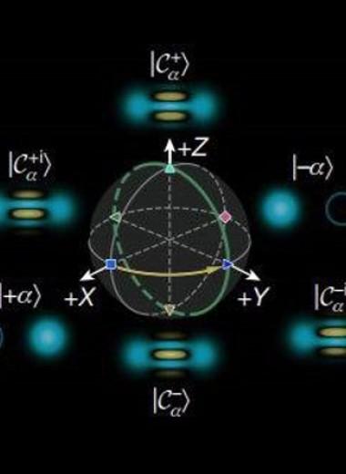 Физики предложили кодировать кубиты котами Шредингера