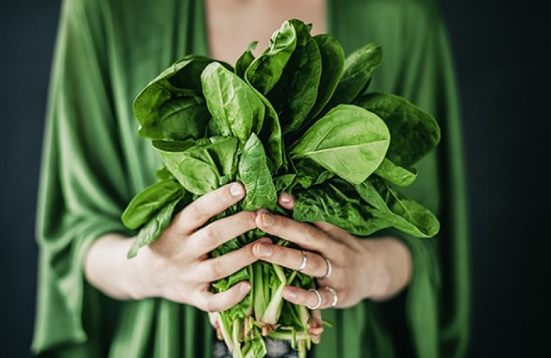 Ешь, делись, береги: как питаться безопасно для природы