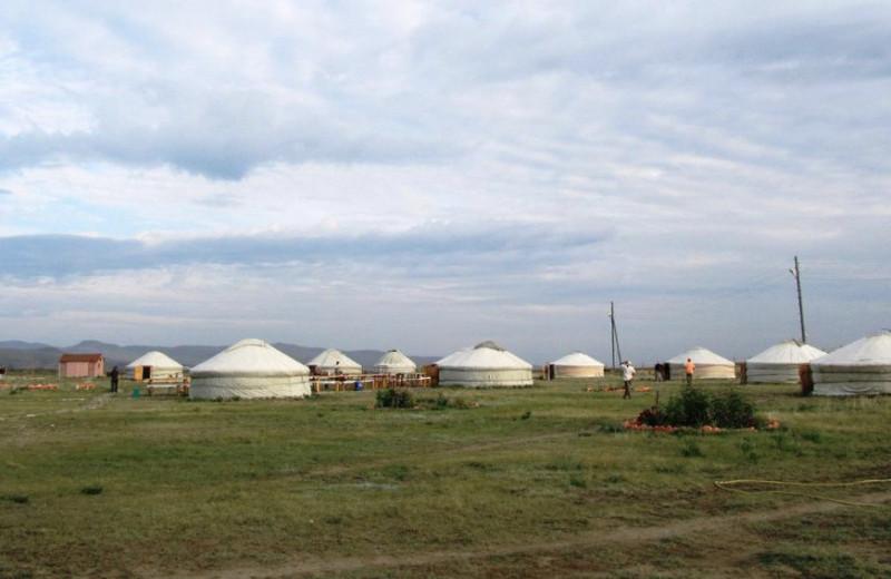 Тюркские юрты, саамский футбол, хоомей и тихий Дон: куда поехать, чтобы познакомиться с культурой народов России