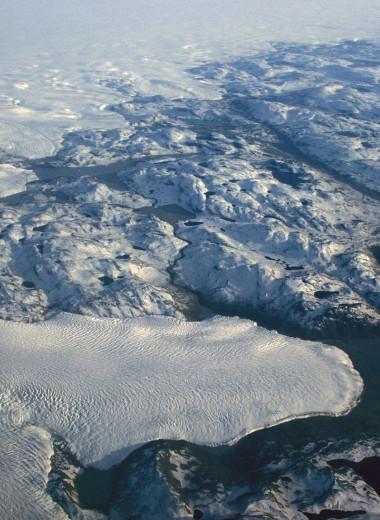 В Гренландии под 1,5-километровым слоем льда нашли остатки растений. Почему это никого не обрадовало?