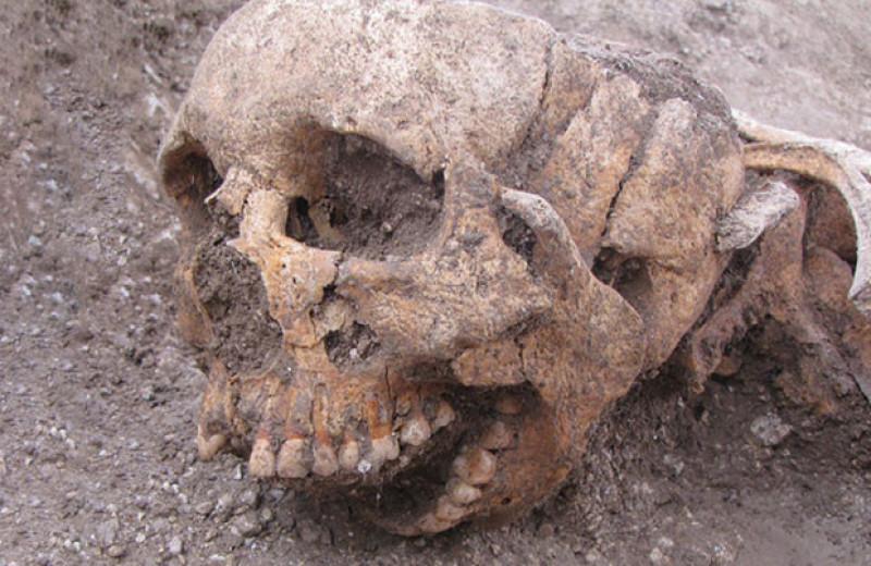 Европейские средневековые погребения вскрыли в VI–VII веках не только для грабежа