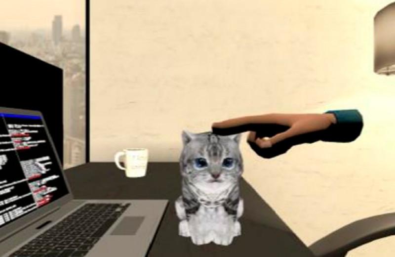 VR-кисточка с регулируемой жесткостью позволила погладить виртуального котенка