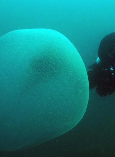 Раскрыт секрет гигантских пузырей в океане