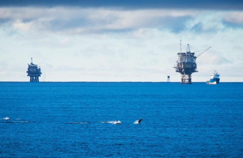 Санкциям вопреки: как российские нефтяники находят деньги в Европе