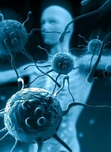 Командовать парадом будет бактерия: на что способны микробы в нашем теле