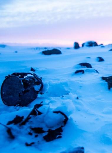 Замерзшие тайны рейха: что нацисты искали в советской Арктике