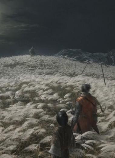 Интернет возмущён сложностью игры Sekiro: Shadows Die Twice