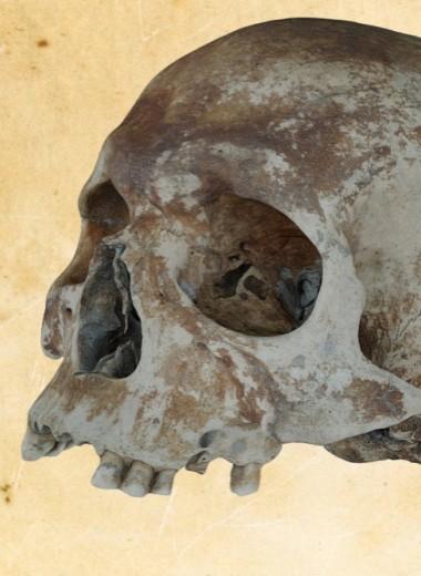 Археология в 3D – что нашли на затонувшем корабле?