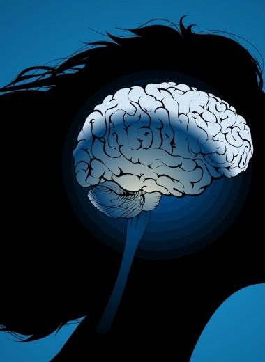 Что такое IQ-тесты и насколько они достоверны: измеряем интеллект
