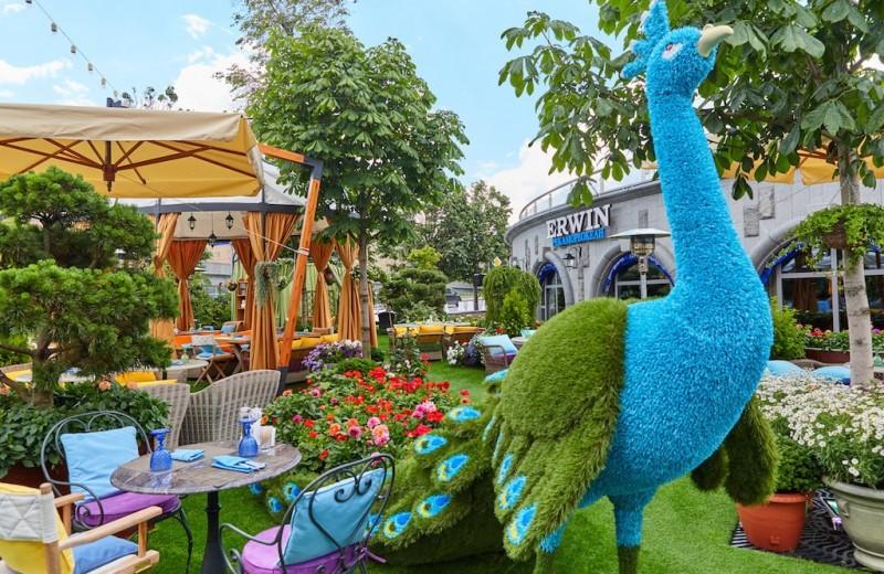 Summertime: 6 лучших летних веранд Москвы