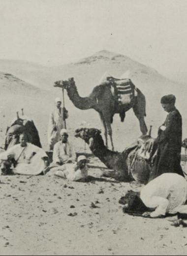 11 слов, помогающих понять арабскую культуру