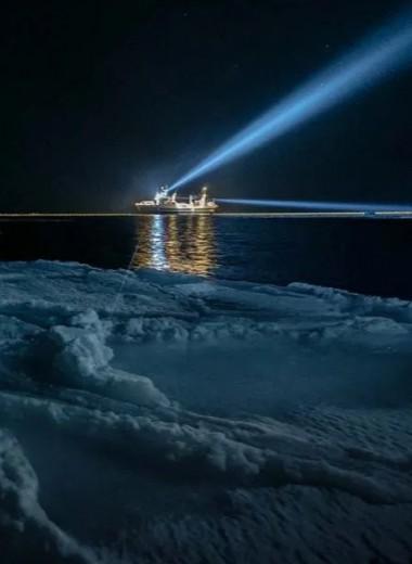 Световое загрязнение достигло морских глубин
