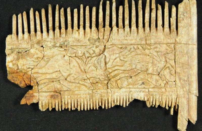 Археологи нашли погребение алеманнского всадника с вооружением и гребнем из слоновой кости