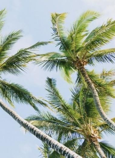 Жизнь проходит мимо? Как не переживать из-за «упущенного» лета