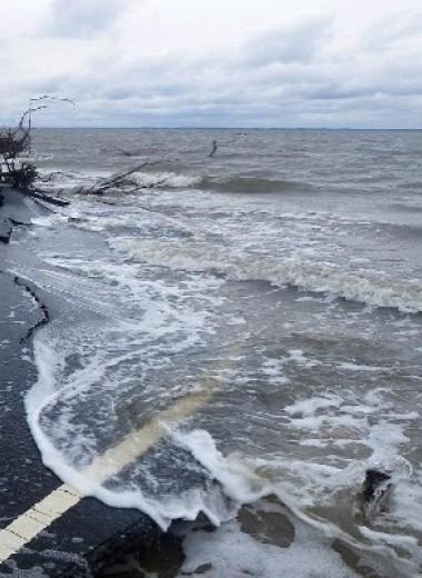 Ученые разошлись с политиками в прогнозах повышения уровня моря