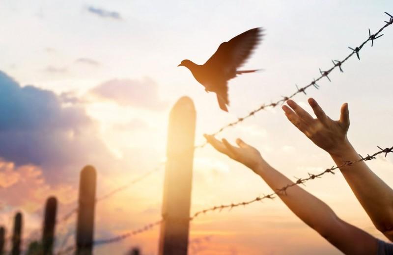 Психологические границы: как защитить личное пространство
