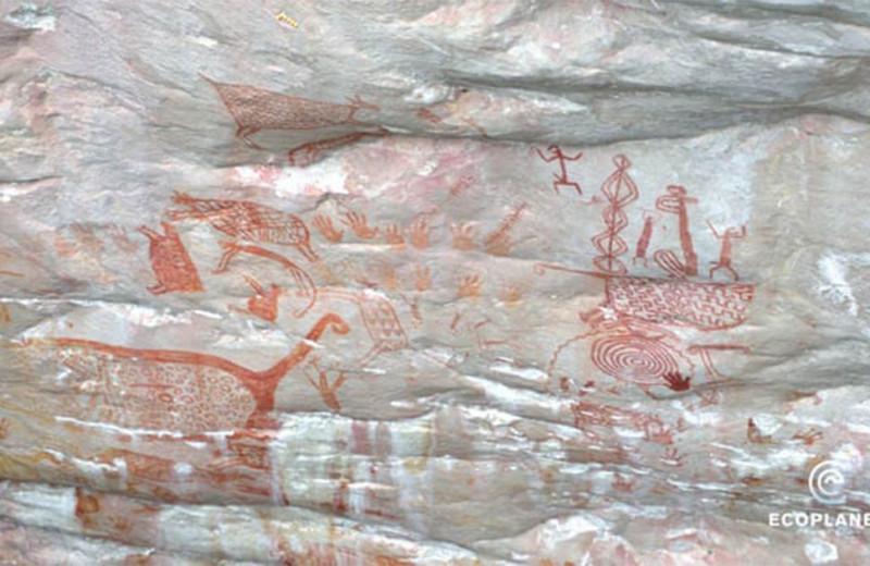 В джунглях Колумбии нашли «Сикстинскую капеллу ледникового периода»
