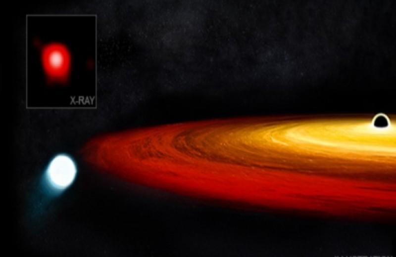 «Чандра» обнаружила рядом со сверхмассивной черной дырой уцелевшее ядро красного гиганта