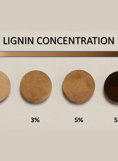 Лигнин защитил древесину от статического электричества