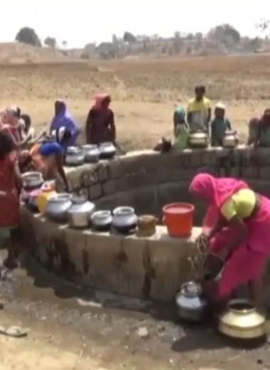 Жара и жажда: острая нехватка воды в Индии