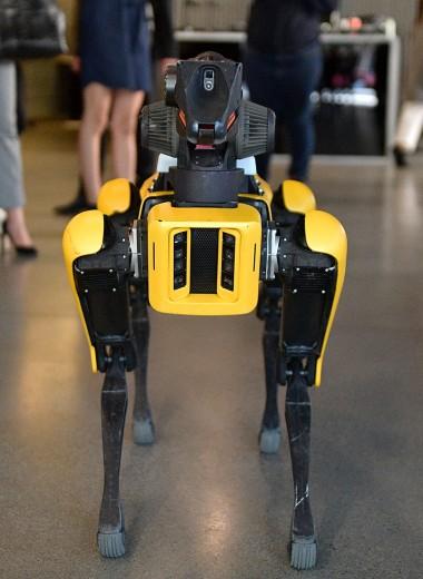 Как Boston Dynamics создала самых знаменитых роботов в мире и когда они начнут помогать людям