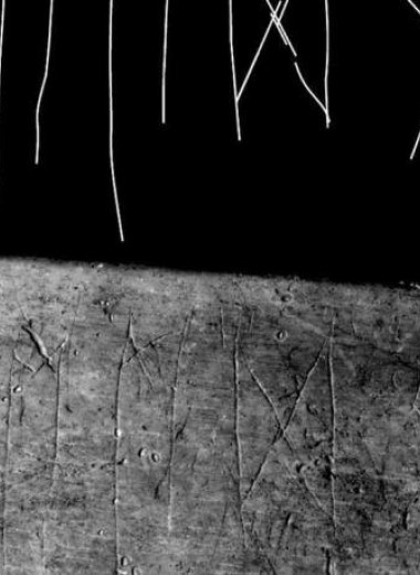 В Чехии нашли древнюю коровью кость с руническими надписями