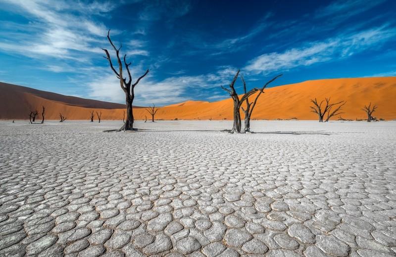 Август 2020 года стал четвертым среди самых жарких за всю историю наблюдений