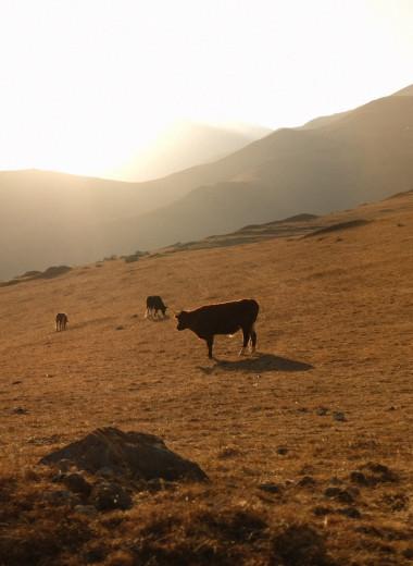 Маршрут на выходные: космические пейзажи Северной Осетии