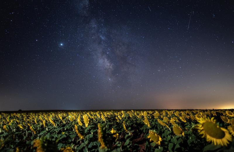 Галактический котел: что увидели астрономы в центре Млечного Пути