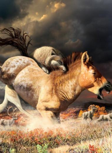 Смена рациона позволила волкам выжить в последний ледниковый период