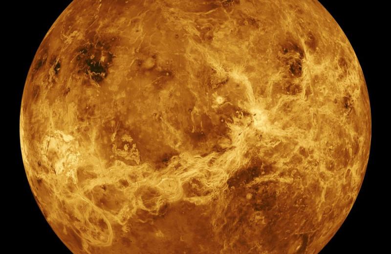 Что известно о возможном существовании микробной жизни на Венере