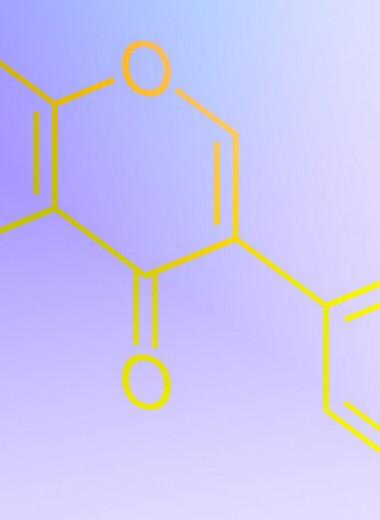 Изофлавоны из соевых бобов связали со снижением риска коронарной болезни сердца