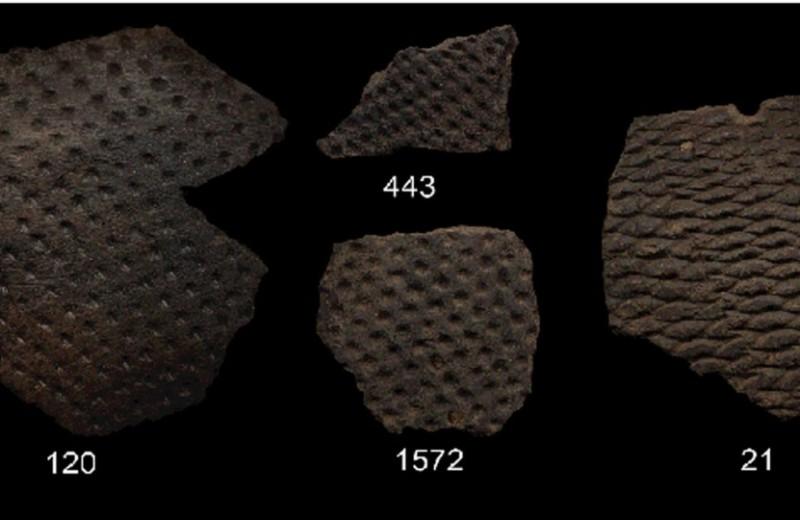 Керамику датировали по въевшемуся жиру