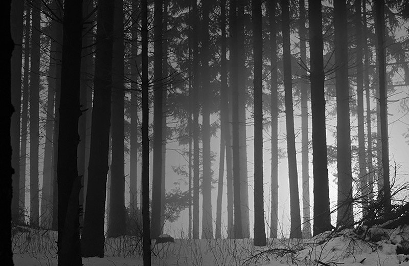 Американский перевал Дятлова: пятеро парней, потерянных в снегах