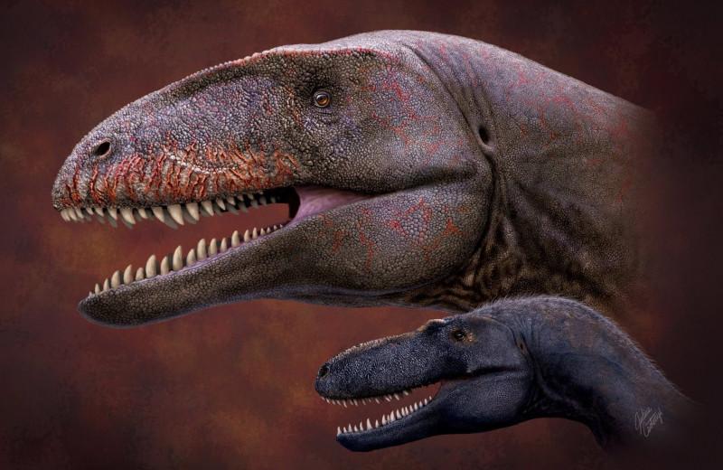 В Узбекистане обнаружили останки динозавра с акулоподобными зубами. Он страшнее, чем T.rex!