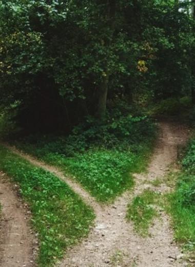 Как принять решение и не сожалеть о нем? Подход философа