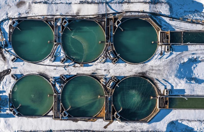Как побороть опухоль мозга и создать крупнейший инвестфонд в сфере выращивания морепродуктов