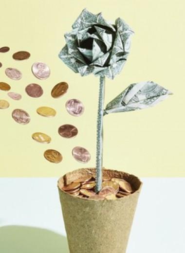 Наши финансы вкризис: возможные стратегии