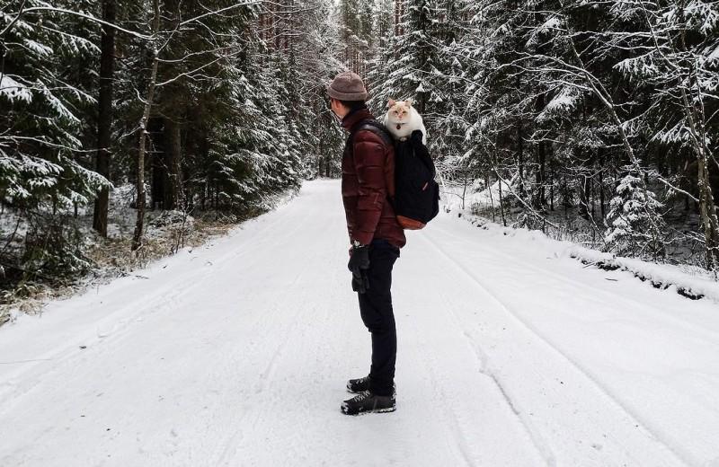 Снимаем на смартфон: впечатления от Asus Zenfone 4 в поездке по Карелии