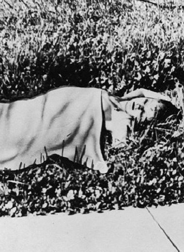 Черный Георгин: убийство, которое потрясло весь мир, до сих пор не разгадано