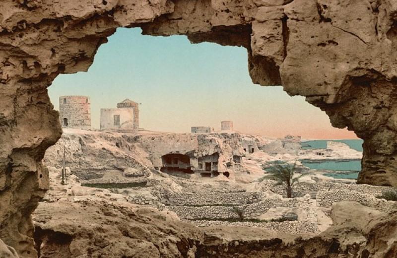 Андре Асиман: Из Египта
