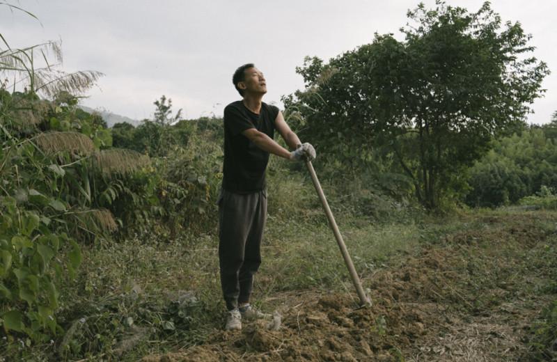 «Родители бы разозлились»: миллениалы в Китае сбегают из городов в сёла, устав от выгорания на работе и в вузах