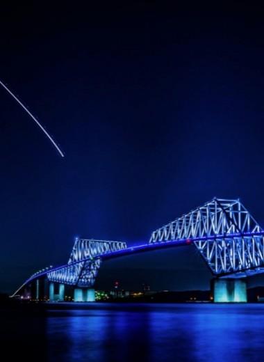Мост-динозавр: полезное украшение Токио