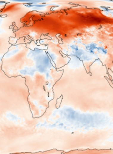 Январь-2020 стал самым теплым за всю историю метеонаблюдений