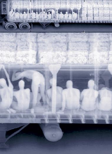 Таможня отбирает добро: 12 провалов контрабандистов