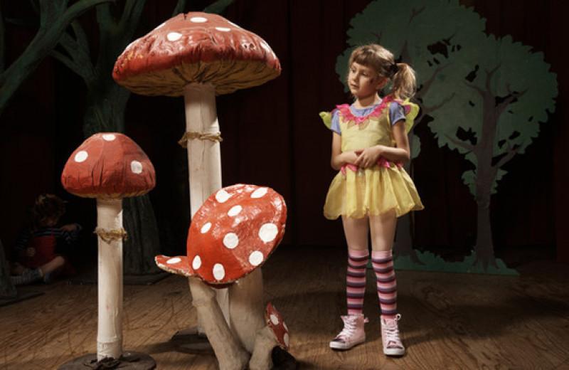 Как детская сказка управляет взрослой жизнью