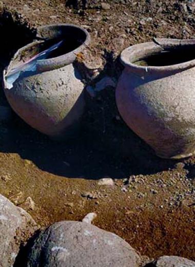 В комплексе галло-римских храмов нашли многочисленные ритуальные дары