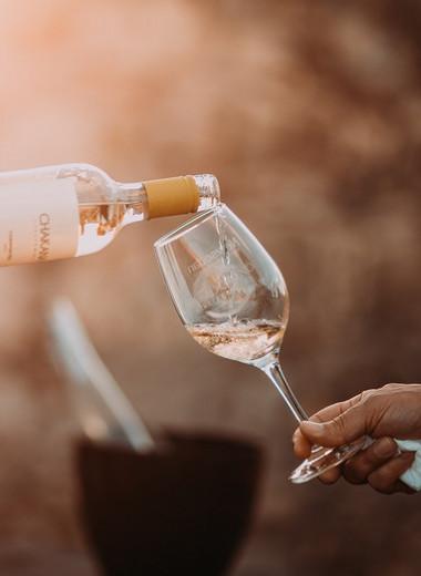Как понять вино без сомелье-переводчика: все тонкости взаимоотношений с напитком