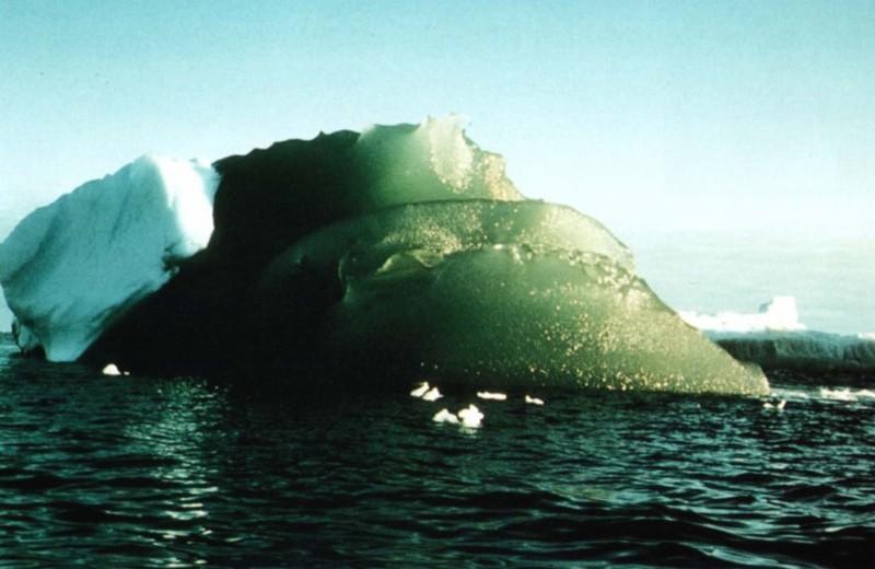 Тайна зеленых айсбергов раскрыта