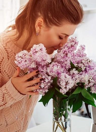 Ускользающая красота: как сохранить цветы в вазе подольше